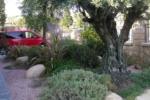disseny-jardins_5b