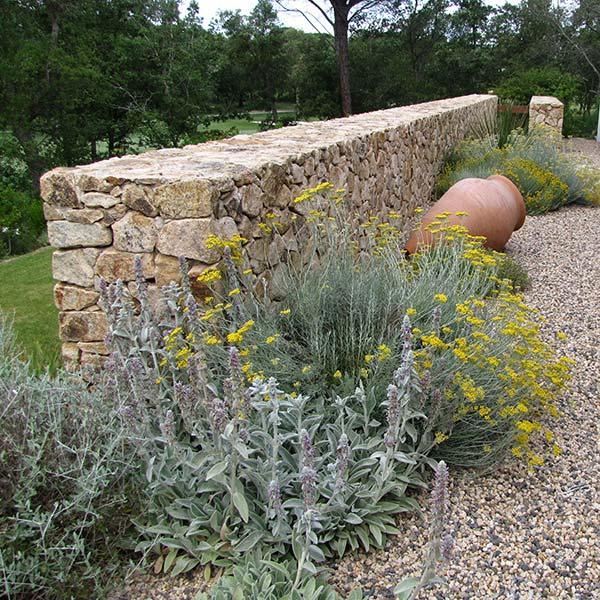 Jardins adaptats a l'entorn