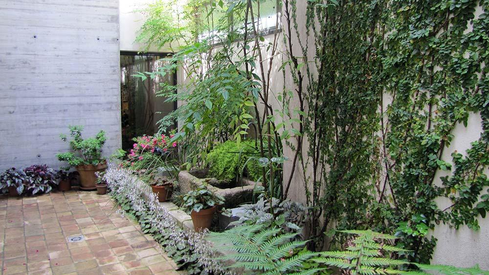 Disseny de jardins a les terrasses de Santa Coloma de Farners